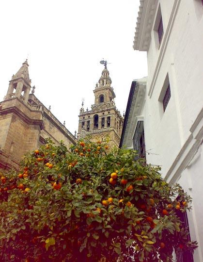 Catedral y barrio de Santa Cruz